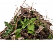 Garden Waste Removal Coastal Skip Hire